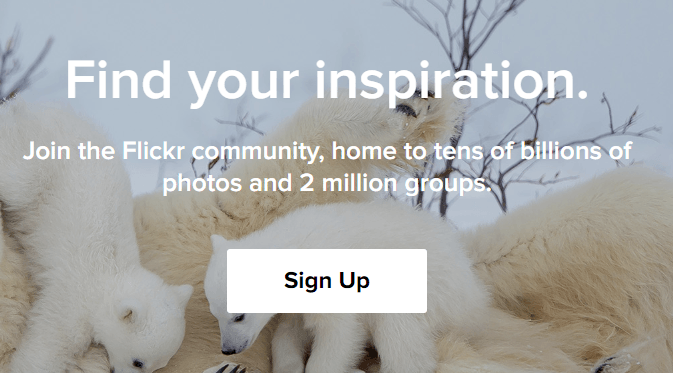 flicker-best-cloud-storage-for-photos
