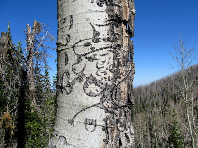 Aspen carving by Dewey Petersen