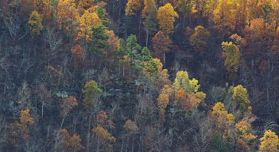 Photo: Richland Creek Valley