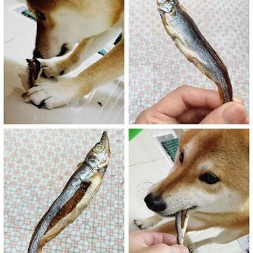 多春魚乾 100g / $32