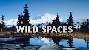 Wild Spaces thumbnail