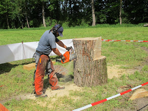 Photo: Im jeden Stück Holz ist etwas drin,man muss es nur finden