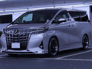 アルファード AGH30W G 2019年式のカスタム事例画像 Ryunosukeさんの2019年12月18日21:18の投稿