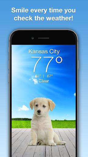 Weather Puppy - App & Widget Weather Forecast ss1