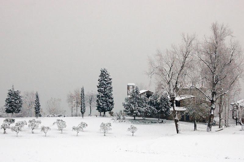 Sotto la neve di Ezio Franceschini