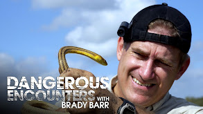 Dangerous Encounters With Brady Barr thumbnail