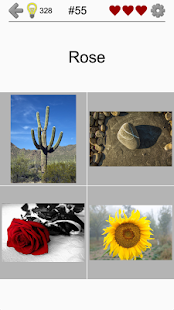 Easy Pictures - Photo-Quiz with 4 Different Topics- screenshot thumbnail