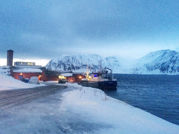 Photo: Honningsvag - the last town on the way