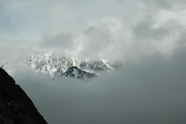 Cime tra la nebbia di MORENO ANTOGNOLI