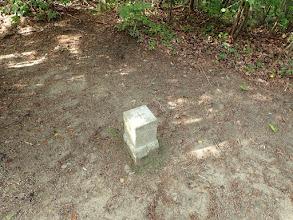岩巣山山頂(三等三角点)