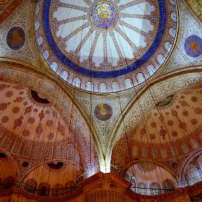 THE GRAND DOME by Michael Rey - Buildings & Architecture Places of Worship ( travel destination, blue mosque, architecture, istanbul, turkey, historic )