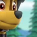 Patrol Jungle Adventure Pupsy Patroller 2D icon