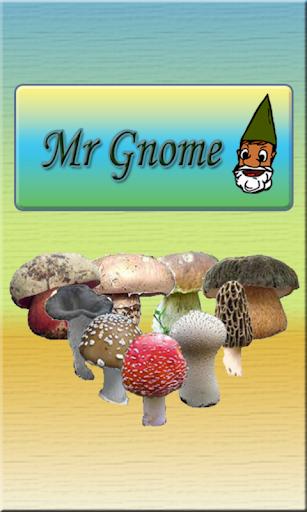 Mr Gnome - Setas