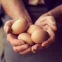 Заговоры на яйцо. Советы icon