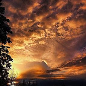state sunset. Sky tripper style by Dawn Morri Loudermilk - Uncategorized All Uncategorized ( Washington )