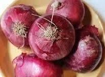 Refrigerator Pickled Onions