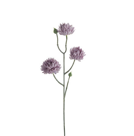 Eternell Lila Blommor 50 cm