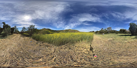 Photo: Just off Pico - San Clemente Open Space
