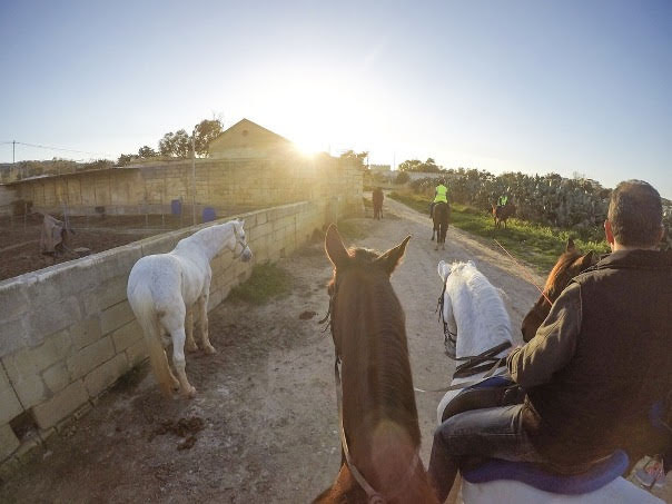 horse riding at Golden Bay