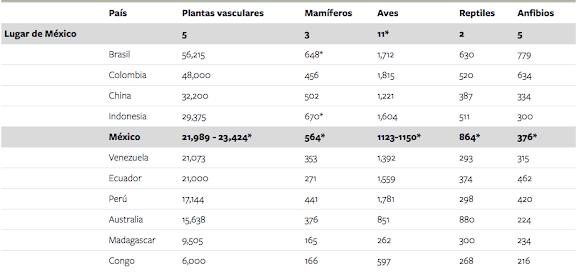 Captura%20de%20pantalla%202021-04-08%20a%20la(s)%2011.03.52.png