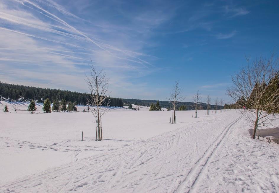 skien-Tsjechië