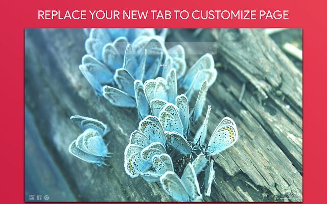 Butterfly Wallpaper HD Custom New Tab