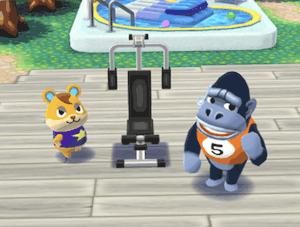 ハムスケのトレーニング
