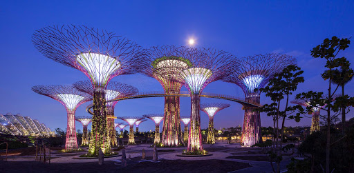 "gardens-by-the-bay-Singapore.jpg - Gardens by the Bay, home to Singapore's futuristic-looking ""supertrees,"" a horticultural project on the water."