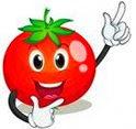 Разборные шпалеры для томатов