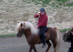 Photo: The Icelandic horse has five gaits, instead of the three of most horses.  The lady demonstrated how some of the gaits were so smooth she wouldn't spill her beer as she rode.