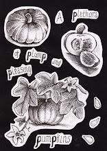 Photo: Lucy Kempton: A plethora of ... pumpkins