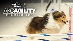 AKC Premier Cup thumbnail