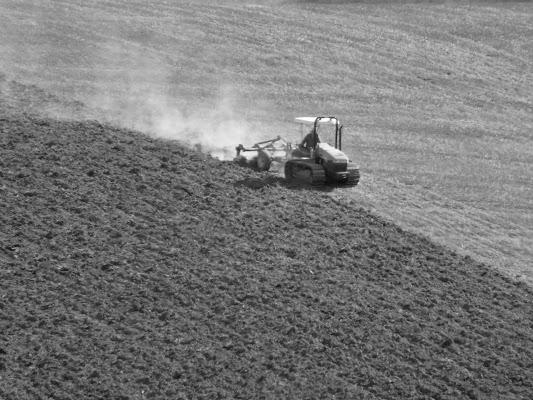 trattore solitario di mariellaturlon