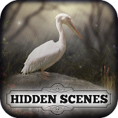 Hidden Scenes - April Showers