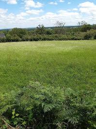 terrain à Camprond (50)