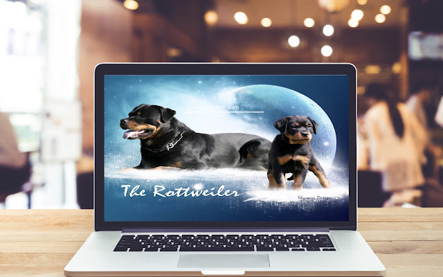Rottweiler HD Wallpapers Dog and Puppy Theme