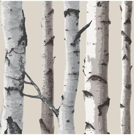 Björkträd tapet