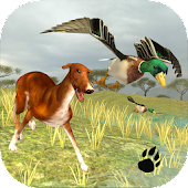 Bird Dog Simulator