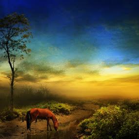 ALONE by Zainal Arifin  - Digital Art Places