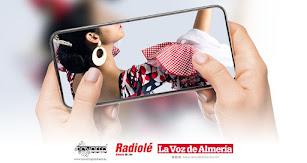 Concurso virtual de trajes de flamenco.