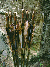 Photo: Arrows. Spindle shaft. Pine wood. Gold cresting