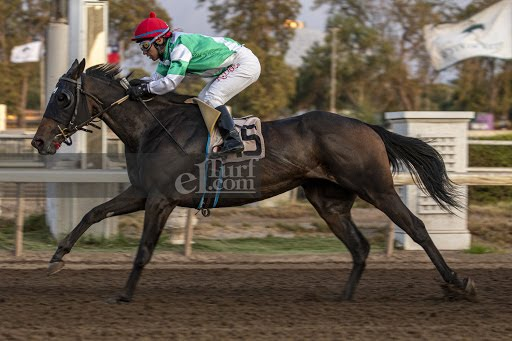 Corre Cote (Seeking The Dia) se impuso en Handicap (1000m-Arena-CHS). - Staff ElTurf.com