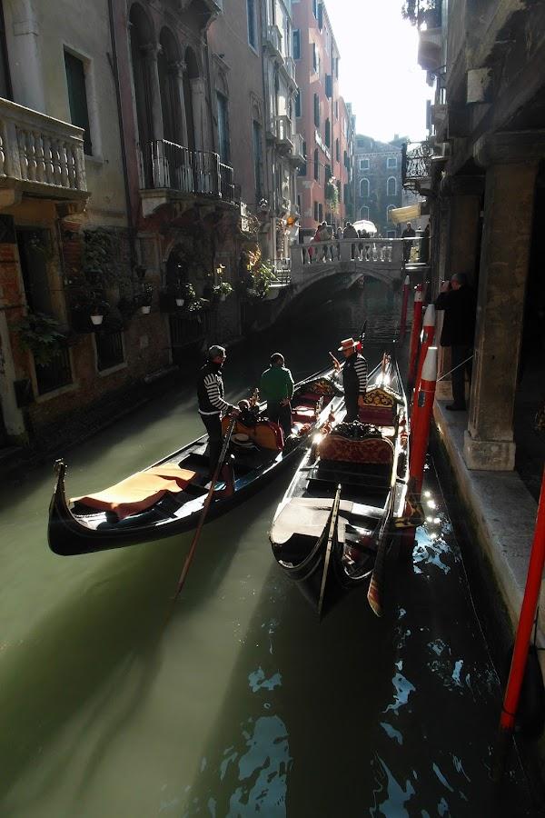 Public transportation in Venice by Bepina Spužvasta - Transportation Boats