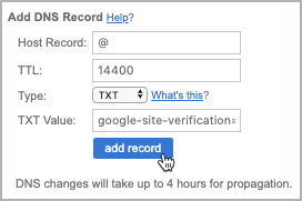 All fields of the TXT record are completed and the add record button is selected.