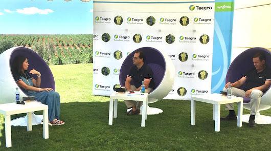 Taegro, el nuevo biofungicida para el control preventivo de oídio y botritis