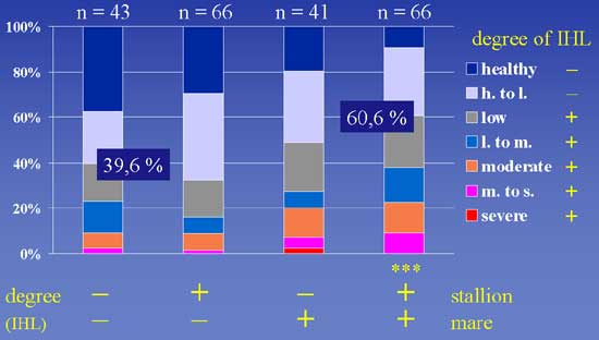 Degree of idiopathic laryngeal hemiplegia (ILH) in 216 adult horses.