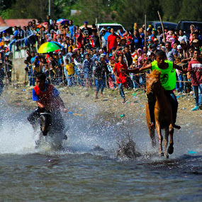 gayo traditional horse race 2 by Khairi Went - Sports & Fitness Other Sports ( watersport, gayoland, sport, traditional, horserace, people, animal,  )
