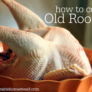How to Cook an Old Rooster (or Hen!).