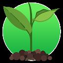 Cómo cuidar plantas / jardines