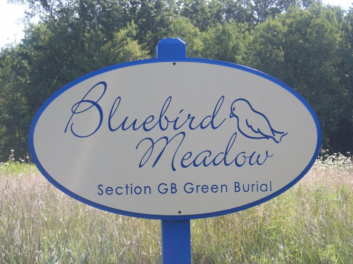 Bluebird Nesting Season